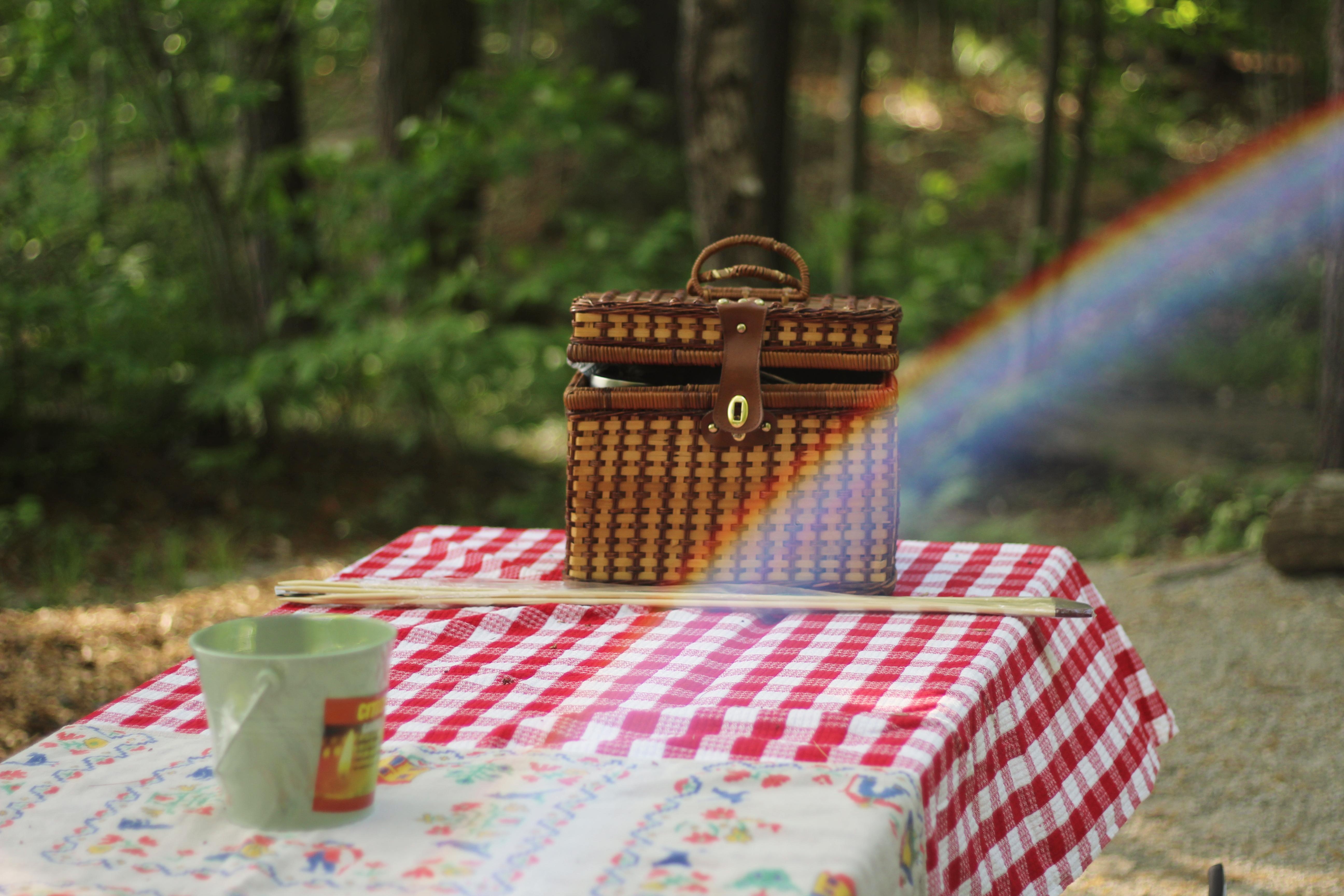 6 breath-taking spots to take a picnic